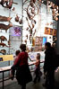 Visitors admire hundreds of species at the Hall of Biodiversity, American Museum of Natural History. New York City, USA. Image #11221