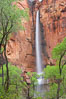 Waterfall at Temple of Sinawava during peak flow following spring rainstorm.  Zion Canyon. Zion National Park, Utah, USA. Image #12450