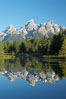 The Teton Range is reflected in the glassy waters of the Snake River at Schwabacher Landing. Grand Teton National Park, Wyoming, USA. Image #12985