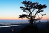 Sunset over the Pacific, Kalaloch Beach. Kalaloch, Olympic National Park, Washington, USA. Image #13789