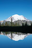 Mount Rainier is reflected in Upper Tipsoo Lake. Tipsoo Lakes, Mount Rainier National Park, Washington, USA. Image #13832