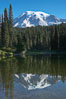 Mount Rainier rises above Reflection Lake, afternoon. Reflection Lake, Mount Rainier National Park, Washington, USA. Image #13851