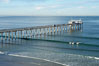 The Scripps Institution of Oceanography research pier is 1090 feet long and was built of reinforced concrete in 1988, replacing the original wooden pier built in 1915.  The Scripps Pier is home to a variety of sensing equipment above and below water that collects various oceanographic data.  The Scripps research diving facility is located at the foot of the pier.  Fresh seawater is pumped from the pier to the many tanks and facilities of SIO, including the Birch Aquarium.  The Scripps Pier is named in honor of Ellen Browning Scripps, the most significant donor and benefactor of the Institution. Scripps Institution of Oceanography, La Jolla, California, USA. Image #14748