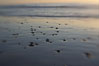 Beach stones and wet sand, reflections of sunset. Ponto, Carlsbad, California, USA. Image #17985