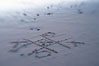 Tic-tac-toe in the sand on the beach. Ponto, Carlsbad, California, USA. Image #17988