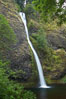 Horsetail Falls drops 176 feet just a few yards off the Columbia Gorge Scenic Highway. Columbia River Gorge National Scenic Area, Oregon, USA. Image #19316