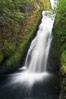 Bridal Veil Falls, a 140 foot fall in the Columbia River Gorge, is not to be confused with the more famous Bridalveil Falls in Yosemite National Park. Bridal Veil Falls, Columbia River Gorge National Scenic Area, Oregon, USA. Image #19330