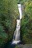 Bridal Veil Falls, a 140 foot fall in the Columbia River Gorge, is not to be confused with the more famous Bridalveil Falls in Yosemite National Park. Bridal Veil Falls, Columbia River Gorge National Scenic Area, Oregon, USA. Image #19331