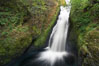 Bridal Veil Falls, a 140 foot fall in the Columbia River Gorge, is not to be confused with the more famous Bridalveil Falls in Yosemite National Park. Bridal Veil Falls, Columbia River Gorge National Scenic Area, Oregon, USA. Image #19333