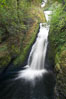 Bridal Veil Falls, a 140 foot fall in the Columbia River Gorge, is not to be confused with the more famous Bridalveil Falls in Yosemite National Park. Bridal Veil Falls, Columbia River Gorge National Scenic Area, Oregon, USA. Image #19334