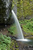 Ponytail Falls, where Horsetail Creeks drops 100 feet over an overhang below which hikers can walk. Columbia River Gorge National Scenic Area, Oregon, USA. Image #19335