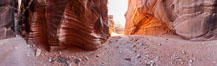 Wire Pass narrows opens into the Buckskin Gulch.  These narrow slot canyons are formed by water erosion which cuts slots deep into the surrounding sandstone plateau.  This is a panorama created from ten individual photographs. Paria Canyon-Vermilion Cliffs Wilderness, Arizona, USA. Image #20705