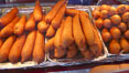 Hot Dog on a Stick, corn dog, greasy fried fatty food. Del Mar Fair, Del Mar, California, USA. Image #20859