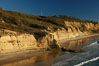 Torrey Pines seacliffs, rising up to 300 feet above the ocean, stretch from Del Mar to La Jolla.  On the mesa atop the bluffs are found Torrey pine trees, one of the rare species of pines in the world. Torrey Pines State Reserve, San Diego, California, USA. Image #22311