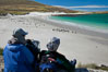 Visitors watch gentoo and Magellanic penguins on beautiful Leopard Beach, coming ashore after they have foraged at sea. Carcass Island, Falkland Islands, United Kingdom. Image #23973