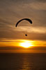 Paraglider soaring at Torrey Pines Gliderport, sunset, flying over the Pacific Ocean. La Jolla, California, USA. Image #24293