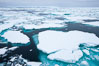 Pack ice and brash ice fills the Weddell Sea, near the Antarctic Peninsula.  This pack ice is a combination of broken pieces of icebergs, sea ice that has formed on the ocean. Southern Ocean. Image #24792