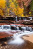 Archangel Falls in autumn, near the Subway in North Creek Canyon, with maples and cottonwoods turning fall colors. Zion National Park, Utah, USA. Image #26097
