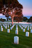 Fort Rosecrans National Cemetery. San Diego, California, USA. Image #26572