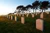 Fort Rosecrans National Cemetery. San Diego, California, USA. Image #26573