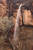 An ephemeral waterfall in Zion Canyon.  In a few hours this waterfall will cease only to return with the next rainstorm. Zion National Park, Utah, USA. Image #26634