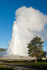 Old Faithful geyser, sunrise.  Reaching up to 185' in height and lasting up to 5 minutes, Old Faithful geyser is the most famous geyser in the world and the first geyser in Yellowstone to be named. Upper Geyser Basin, Yellowstone National Park, Wyoming, USA. Image #26939