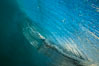 Breaking wave, morning, barrel shaped surf, California. California, USA. Image #27995