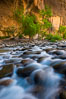 The Virgin River Narrows, where the Virgin River has carved deep, narrow canyons through the Zion National Park sandstone, creating one of the finest hikes in the world. Virgin River Narrows, Zion National Park, Utah, USA. Image #28575