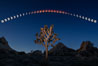 Lunar Eclipse and blood red moon sequence, composite image, Joshua Tree National Park, April 14/15 2014. Joshua Tree National Park, California, USA