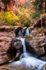 Fall Colors in Kanarra Creek Canyon, Utah. Kanarra Creek, Kanarraville, Utah, USA. Image #32639