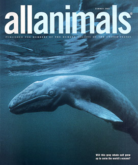 Cover of All Animals Magazine