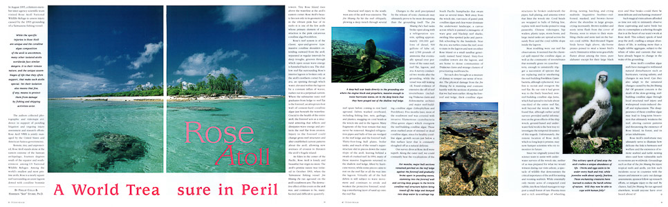 Ocean Realm Rose Atoll Article