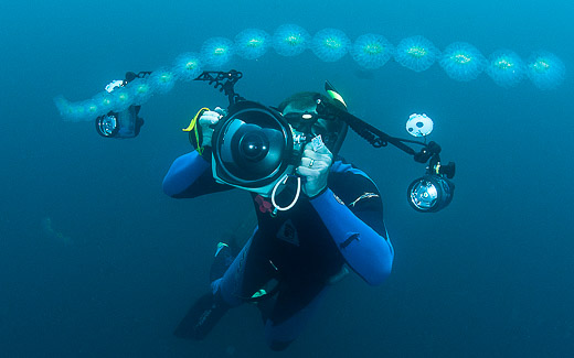 Photographing salps and zooplankton in the open ocean, photo by Mike Johnson / Earthwindow.com