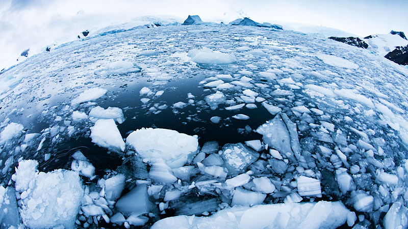 Brash Ice, Antarctic Peninsula