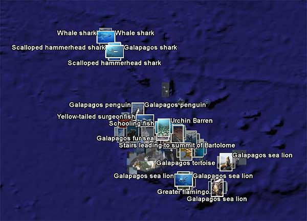 Click To View Galapagos Island Images in Google Earth.  You must have Google Earth installed for this feature to work correctly.