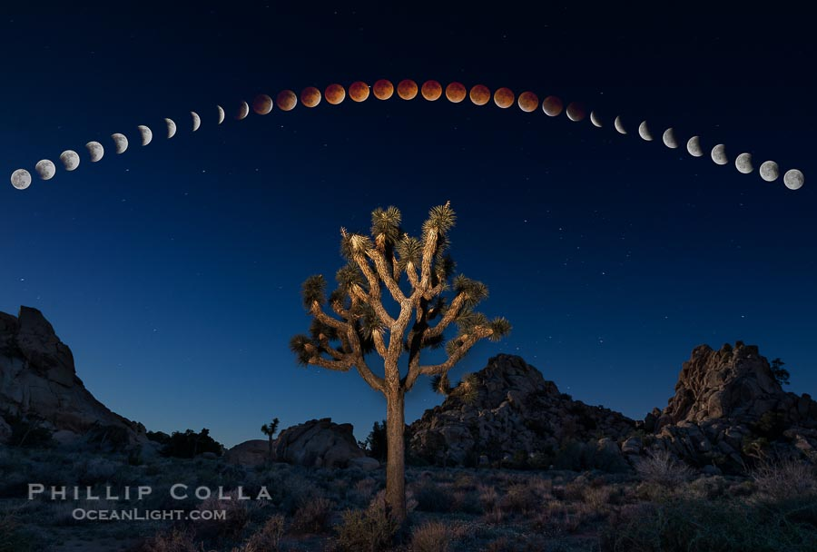 Lunar Eclipse and blood red moon sequence, over Joshua Tree National Park, April 14/15 2014.