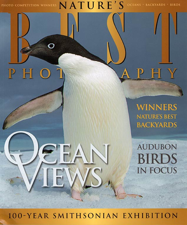 Adelie Penguin, Antarctica, Nature's Best Photography Spring/Summer 2010. Click to see more images from Antarctica