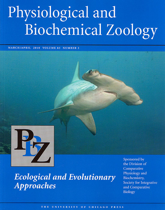 Hammerhead shark cover photo, Physiological and Biochemical Zoology, March/April 2010