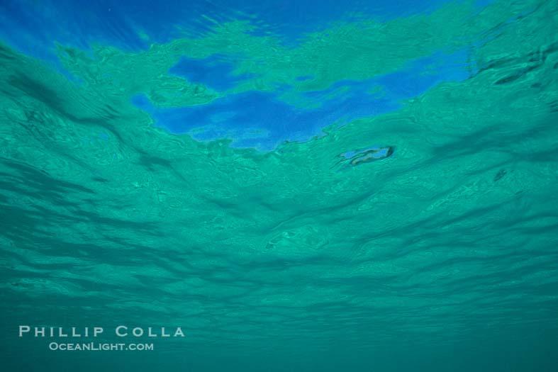 Beneath the Sea, Abstract Photo
