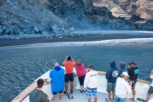 Viewing northern elephant seals along the beach, from the vessel Horizon, at Guadalupe Island, Guadalupe Island (Isla Guadalupe)