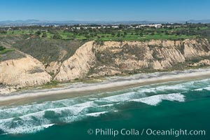 Torrey Pines seacliffs, rising up to 300 feet above the ocean, stretch from Del Mar to La Jolla. On the mesa atop the bluffs are found Torrey pine trees, one of the rare species of pines in the world, Torrey Pines State Reserve, San Diego, California