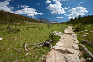 Alpine meadow and John Muir Trail, in Yosemite's high country on approach to Vogelsang High Sierra Camp. Yosemite National Park, California, USA, natural history stock photograph, photo id 23212