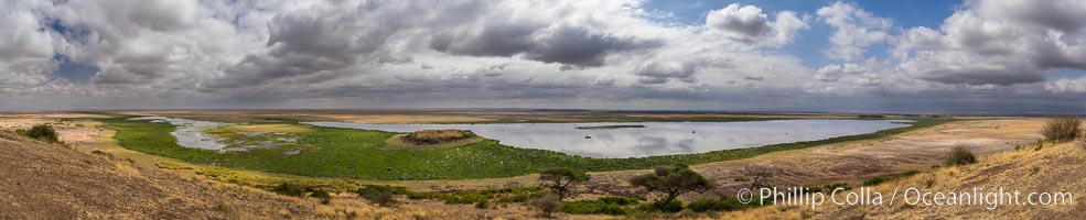 Amboseli National Park swamp viewed from Observation Hill, panoramic photo