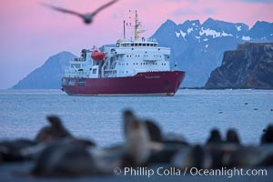 M/V Polar Star, an icebreaker expedition ship, lies at anchor in Right Whale Bay, South Georgia Island.  Antarctic fur seals on the beach, and the rugged South Georgia Island mountains in the distance.  Sunset, dusk, Arctocephalus gazella