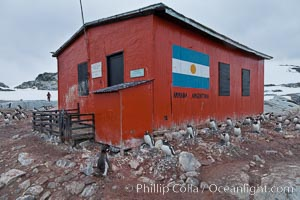 Argentine research hut on Petermann Island, Antarctica. Peterman Island, Antarctic Peninsula, Antarctica, Pygoscelis papua, natural history stock photograph, photo id 25605