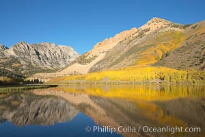 Aspens changing into fall colors, yellow and orange, are reflected in North Lake in October, Bishop Creek Canyon, Eastern Sierra. Bishop Creek Canyon, Sierra Nevada Mountains, Bishop, California, USA, Populus tremuloides, natural history stock photograph, photo id 17593