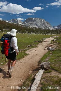 Hiker traversing the John Muir Trail to Fletcher Peak and Vogelsang Peak through alpine meadow in Yosemite's high country, trail on approach to Vogelsang High Sierra Camp, Yosemite National Park, California