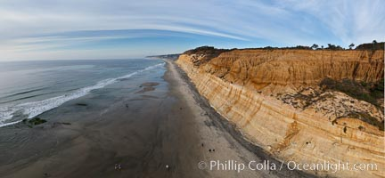 Torrey Pines balloon aerial survey photo.  Torrey Pines seacliffs, rising up to 300 feet above the ocean, stretch from Del Mar to La Jolla. On the mesa atop the bluffs are found Torrey pine trees, one of the rare species of pines in the world. Peregine falcons nest at the edge of the cliffs. This photo was made as part of an experimental balloon aerial photographic survey flight over Torrey Pines State Reserve, by permission of Torrey Pines State Reserve. Torrey Pines State Reserve, San Diego, California, USA, natural history stock photograph, photo id 27279