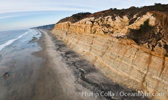 Torrey Pines balloon aerial survey photo.  Torrey Pines seacliffs, rising up to 300 feet above the ocean, stretch from Del Mar to La Jolla. On the mesa atop the bluffs are found Torrey pine trees, one of the rare species of pines in the world. Peregine falcons nest at the edge of the cliffs. This photo was made as part of an experimental balloon aerial photographic survey flight over Torrey Pines State Reserve, by permission of Torrey Pines State Reserve. Torrey Pines State Reserve, San Diego, California, USA, natural history stock photograph, photo id 27284