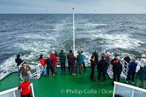 Birdwatching, on the stern deck of the ship M/V Polar Star.  While en route between remote ocean islands such as the Falklands, South Georgia, South Orkneys and South Shetlands, seabirds often fly alongside the boat